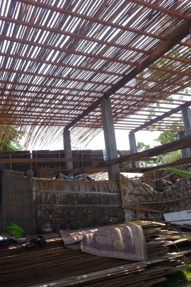 01 bambou1